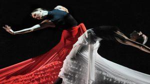 15-flamenco