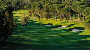 22-golf